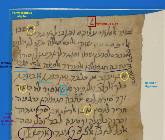 annotated section of MS T-S 10J17.3