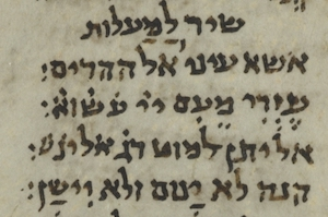 cropped section of ms T-S A43.8 P3, verso