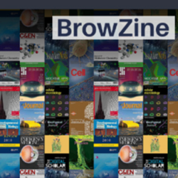 A virtual shelf of books depicted on a computer screen